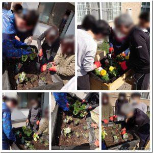 園芸療法~野菜と花の植付け~