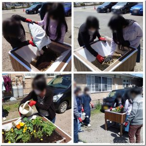 レイズドベッドを利用した園芸活動(イチゴや花を植え付け)