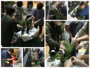 SSTの園芸活動の開始